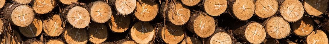 hout-productie-papier-facilitair-milieu-abena