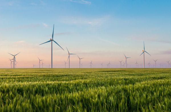 natuur beschermen met goede regels voor het milieu